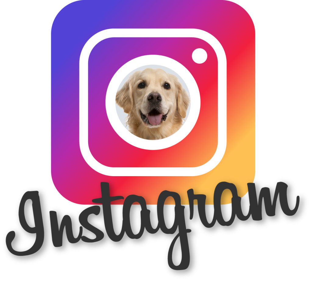Instagram Logo_Widget2